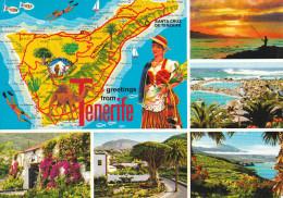 España--Tenerife--ERl Drago--El Teide--Costas Acantiladas--Plano De La Isla---a, Francia - Mapas