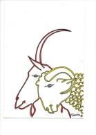 13486 - Salon National Du Mouton Et De La Chèvre Montmorillon 1985 (Format 10  15) - Animaux & Faune