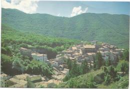 O184 Filettino (Frosinone) - Panorama Del Paese / Viaggiata 2004 - Altre Città