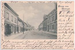 Gruss Aus WOLDEGK Krämerstrasse Links Alfred Meinhold Danach Schuhmacher C Bebel 8.1.1901 Nach Fürstenwerder - Neubrandenburg