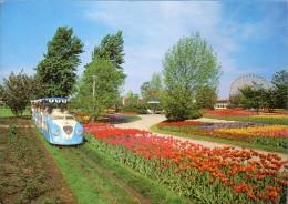 Dortmund - Westfalenpark  Mit Kleinbahn Und Altstadt - Dortmund