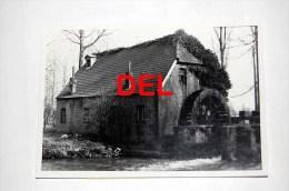 Baelen  Molen - Photo Originale Des Années 1960-1970 - Bélgica