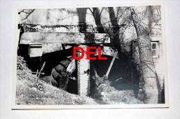 Hoeselt  Molen - Photo Originale Des Années 1960-1970 - Hoeselt