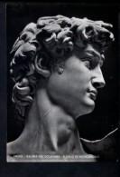 N1537 SCULTURA, IL DAVID DI MICHELANGELO - FIRENZE, GALLERIA ACCCADEMIA - VERA FOTOGRAFIA - ARTE, SCULPTURE - Sculptures