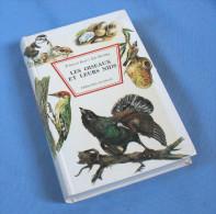 Les Oiseaux Et Leurs Nids / Nathan éditeur 1968 - Dieren