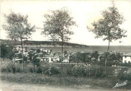 CPSM       Hendaye  Vue Générale  Le Cap Du Figuier         P  2234 - Hendaye