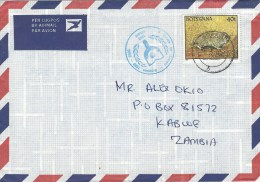 Botswana 1993 Lobatse Mole Rat Decade For Literacy Handstamp And Sticker On Cover - Botswana (1966-...)