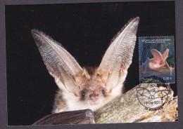 FRANCE 2013 MAXIMUM CARD BATS - Bats