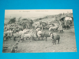 63 ) Auvergne N° 32 - Intérieur D'une Ferme  - Année  - EDIT - Hirondelle - Unclassified