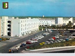 Afrique- Algérie (Sidi-Ferruch Staoueli WilayaAlger )  SIDI FREDJ Hôtel Du Port (auto Voiture)   *PRIX FIXE - Alger