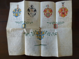 Rare Manuscrit Sur Parchemin  Aquarellée Arbre Généalogique Blason  XVIII Eme - Manuscrits