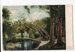 Uruguay Montevideo Tarjeta Postal Ed. Strobach Nº14 Prado Original Ca1900 Postcard Cpa Ak (W4_1837) - Uruguay