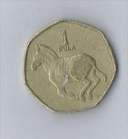 1 Pula 1991 Botswana - Botswana