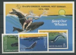 Turks- Und Caicos-Inseln 1984 Weltpostkongreß 699/0 Block 51 Postfrisch (R21908) - Turks & Caicos (I. Turques Et Caïques)
