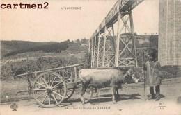 SUR LA ROUTE DE GARABIT ATTELAGE BOEUF 15 CANTAL - Frankrijk