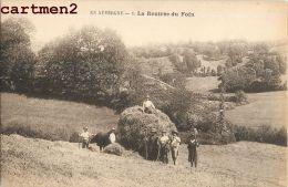 CANTAL LA RENTREE DU FOIN AGRICULTURE FENAISON ATTELAGE 15 AUVERGNE - Unclassified