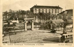 ALFORT(VAL DE MARNE) ECOLE VETERINAIRE(TRAMWAY) - Alfortville