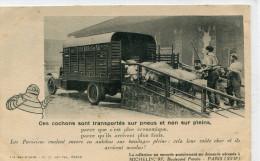 CAMION(MICHELIN) COCHON - Camions & Poids Lourds