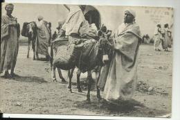 MAROC  - Porteurs Arabes Et Leurs Bouriquofs - Non Classés