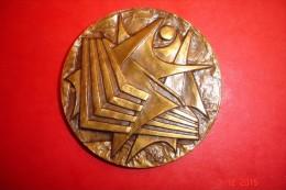 Médaille Commémorative.35 Ans De Nanterre 1935-1970.Bronze Signé Roy.70 Grs Dia:6 Cms. - France