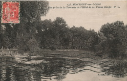 MONTIGNY SUR LOING - Vue Prise De La Terrasse De L'Hôtel De La Vanne Rouge - Otros Municipios