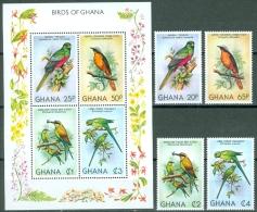 Ghana 1981 Birds MNH** - Lot. A356 - Ghana (1957-...)
