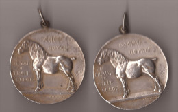 2 Medailles  BELGISCH TREKPAARD SOC.ROYALE LE CHEVAL DE TRAIT ALBERT ROI DES BELGES - Belgique