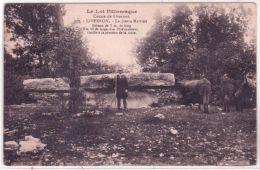 Le Lot Pittoresque -977- LIVERNON -la Pierre Martine -ed. Roques - Livernon