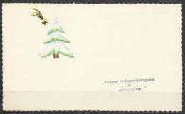 Hungary, Marry Christmas, HNY,  Star Of Bethlehem, Hand Painted, ´60s. - Xmas