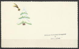 Hungary, Marry Christmas, HNY,  Star Of Bethlehem, Hand Painted, ´60s. - Kerstmis
