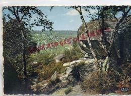 77 - FONTAINEBLEAU - AUX GORGES FRANCHARD - LA ROCHE DE JEAN GOUJON  ECHAPEE SUR LES GORGES - Fontainebleau