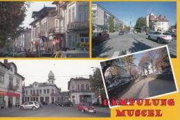 Romania Campulung Muscel Multi View Postcard - Rumänien