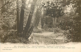 17 SAINT PORCHAIRE Domaine De La Roche Courbon - Andere Gemeenten