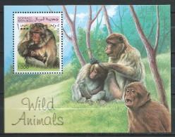 Africa Somalia 1999.ANIMAL,MONKEY, SOUVENIR MNH. - Somalie (1960-...)