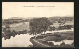 CPA Chaux-les-Port, Le Saône Jolie - Unclassified