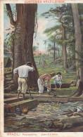 Brazil - Falquejadores (animation, Worker, 1914) - Brésil