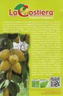 # LIMONI LA COSTIERA Italy Tag Balise Etiqueta Anhänger Cartellino Fruits Frutas Citron Lemon Limon Citroen Zitron - Fruits & Vegetables