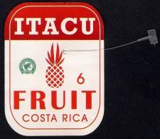 # PINEAPPLE ITACU Round Edges Calibre 6 Fruit Tag Balise Etiqueta Anhanger Ananas Pina Costa Rica - Fruits & Vegetables