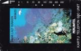 Indonesia, S048, Bunaken Sea Park, Manado, North Sulawesi, 2 Scans. - Indonesia
