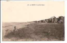 17 - ILE D'OLERON - LA BREE à Marée Basse - Ile D'Oléron