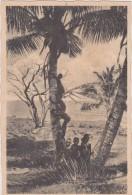 FIJIAN CHILDREN - Fiji