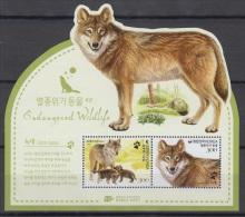 South Korea KPCC2422a Wolf, Loup, Canis Lupus, Environment Protection, Protection De L'environnement - Protection De L'environnement & Climat