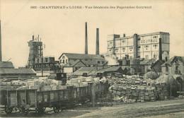 Dép 44 - Papeterie - Chemins De Fer - Wagons - Nantes - Chantenay Sur Loire - Vue Générale Des Papeteries Gouraud - Nantes