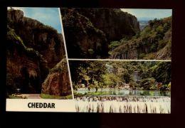 L9789 CHEDDAR - VIEWS - Bath