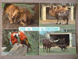 DOUE LA FONTAINE (49). MULTIVUE SUR LE ZOO  . ANNÉES 1980 - Doue La Fontaine