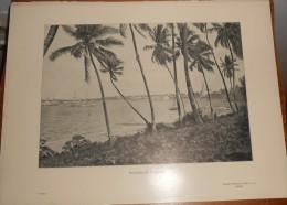Tanzanie. Panorama De Daressalam. Photogravure. 1914. - Tanzania