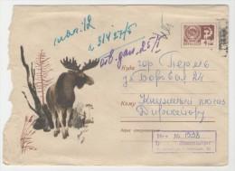 GOOD USSR / RUSSIA Postal Cover 1967 - Moose - Briefmarken