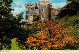 WINDSOR  CASTLE   E.  NAGELE     (NUOVA) - Windsor Castle