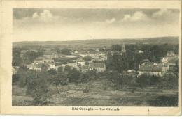 91 CPA Ris Orangis Vue Generale 1931 - Ris Orangis
