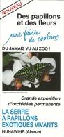 France Hunawihr Alsace / Papillon Vlinder Butterfly Orchidée Orchidee Orchid - Dépliants Touristiques